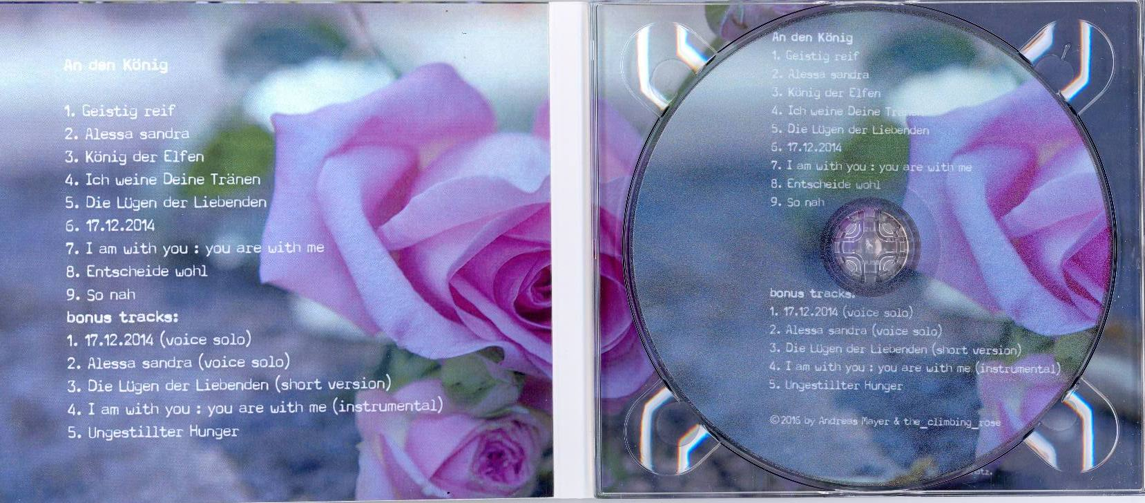 cd-innen